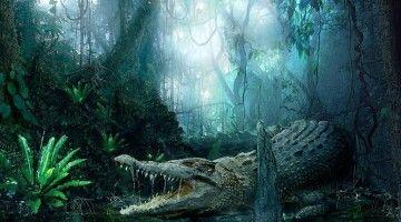 El veloz murciégalo comía almóndigas con el crocodilo